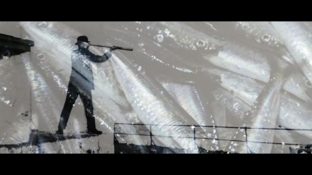 Pilchards - A Brief History of the Cornish Sardine